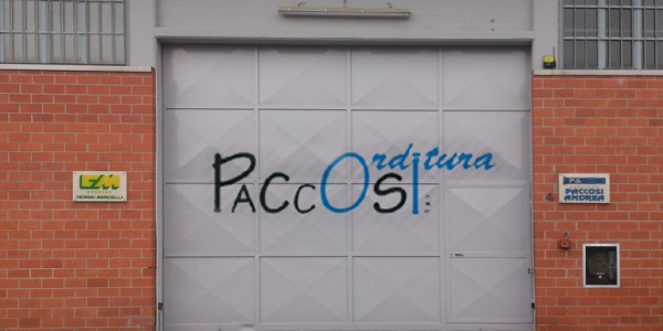Orditura Paccosi